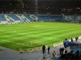 Поле стадиона «Динамо»: готовность на 100%!