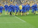 Матч Украина — Албания все-таки состоится