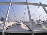 Крыша «Олимпийского» снега не боится