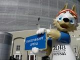 В России могут запретить жарить шашлыки во время проведения ЧМ-2018