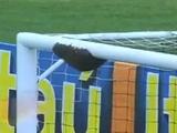 В Бразилии — пчелы против футбола. ВИДЕО