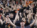 В Киев на матч с «Динамо» приедут около 400 фанатов «Шахтера»
