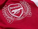 «Арсенал» увековечит Адамса, Анри и Чепмэна в бронзе