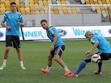 ФОТОрепортаж: открытая тренировка сборной Украины на «Арене Львов» (53 фото)