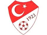 Федерация футбола Турции дисквалифицировала пожизненно 11 человек