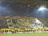 Дортмундская «Боруссия» запретила фанату три года посещать стадион за оскорбительный баннер