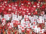 В Египте более 130 полицейских получили ранения в столкновении с фанатами