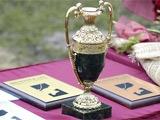 Официально. Кубок Азии-2015 примет Австралия