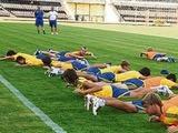 """Евро-2009: от сборной Украины ждут """"золота"""""""