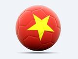 Вьетнамский футболист дисквалифицирован на 28 матчей за игровой эпизод