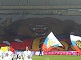 Баннер российских болельщиков может войти в книгу рекордов Гиннесса