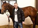 Руни купил лошадь за 63 тысячи