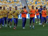 Сборная Украины начала подготовку к матчу с Францией