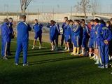 Сборная Украины начала подготовку в Севилье