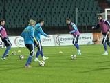 ФОТОрепортаж: тренировка сборной Украины в Люксембурге (16 фото)