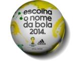 Имя для мяча чемпионата мира-2014 выберут болельщики
