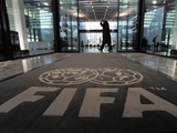 ФИФА пригрозила дисквалификацией Боснии и Герцеговине и Того