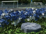 «Шальке» открыл кладбище для фанатов
