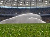Газон «Олимпийского»: водные процедуры