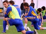 Официально. Украина проведет товарищеские матчи с Чили и Германией
