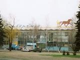 Киевский ипподром станет домашней ареной для «Арсенала»