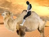 Кварцяный: «Ндойе в пустыне Гоби катается на верблюдах»