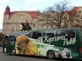 «Карпаты» выходят на Евромайдан