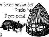 Крым. РФС мечется, как крыса
