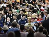 Лионель Месси: «Трудно смотреть на фотографию, где я прохожу мимо Кубка мира...»