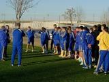 УФИ: тренерский штаб сборной Украины отказался от товарищеских матчей до 2 сентября