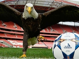 УЕФА представил официальный мяч финала Лиги чемпионов-2013/14