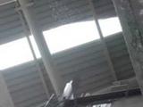 Перед матчем Евро на стадионе в Турции обвалилась крыша