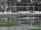 На стадионе в Луганске поле снова будет натуральным