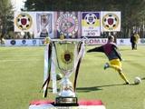 Министерство молодежи и спорта предоставило официальный статус чемпионату по футболу среди команд Лиги участников АТО