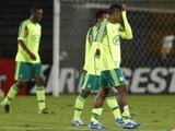 «Палмейрас» покинул высший дивизион чемпионата Бразилии