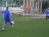 «Динамо» в Марбелье. Сегодня — матч с «Базелем»