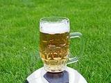 «Гамбург» заплатит 30 тысяч за кружку пива