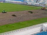 На стадионе «Динамо» им. Валерия Лобановского началась замена газона
