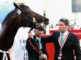 Обладатель «Золотого мяча» дебютирует в конном спорте