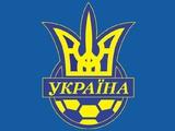 КДК ФФУ наказал тренера свердловского «Шахтера» по итогам матча с «Динамо-2»