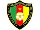 Федерация футбола Камеруна заплатит ? 380 тыс. за сорванный матч с Алжиром