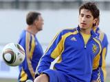 Александр ЯКОВЕНКО: «Если стану регулярно играть в «Фиорентине», то и в сборной пригожусь»