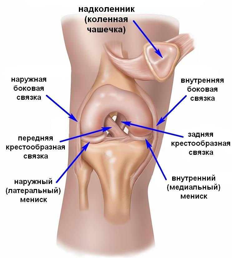 Травма Роналду., sedoj седой, 11 июля 2016 г. — Динамо Киев от ...
