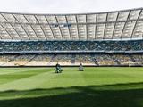 В «Шахтере» заявили, что контролируют уход за полем «Олимпийского»