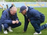 «Динамо» помогло «Николаеву» привести в порядок газон