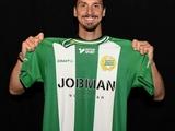 Ибрагимович стал совладельцем шведского клуба (ФОТО)
