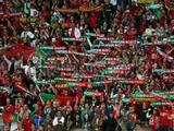 Болельщики сборной Португалии: «Молодые парни из сборной Украины вышли и порвали нас»