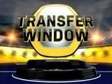 Трансферное окно в АПЛ откроют в конце июля