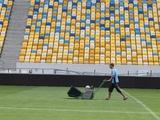 На «Арене Львов» постелят искусственный газон