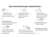 Цикл жизни болельщика Динамо Киев